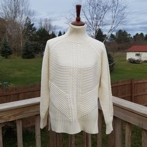 Banana Republic Buttercream Turtleneck Sweater